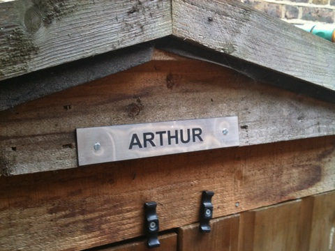 Shed label: Arthur