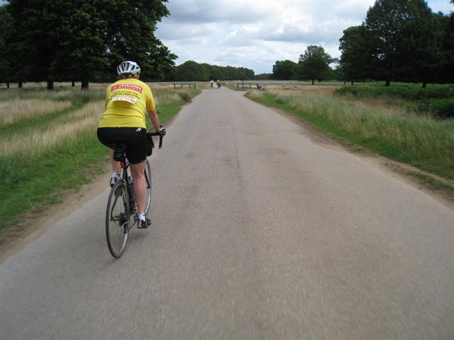 Cycling through Richmond Park
