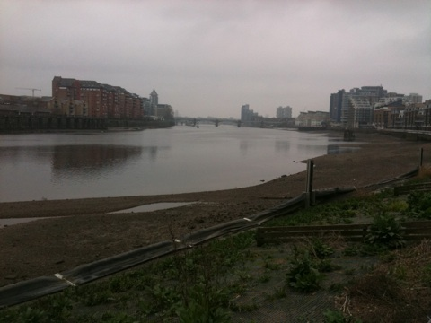 Thameside path 07:40 on 30-March-2011