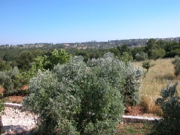 view across valley from lamia roof