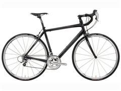 Mary's Brand new Specialized Roubaix Comp