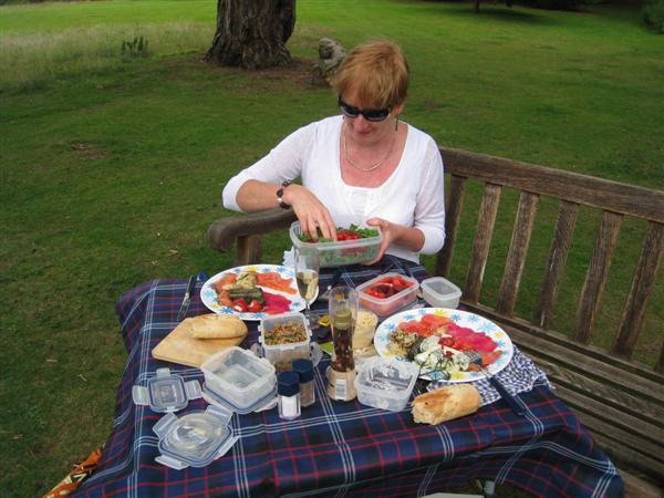 NT Hatchlands Park: picnic