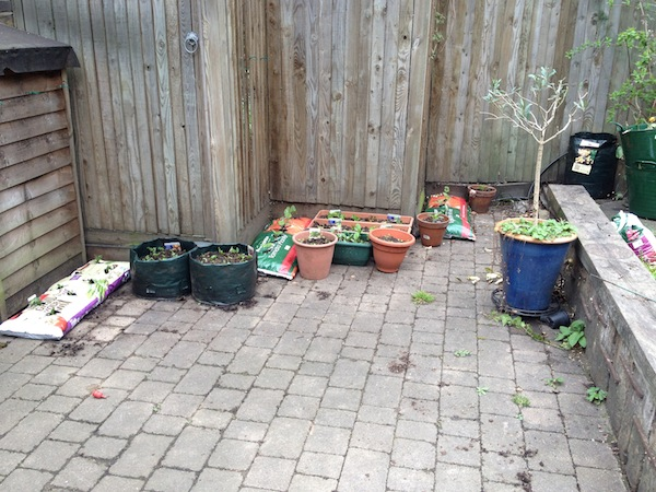 Urban gardening - 02