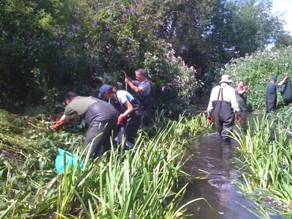Volunteers cleaning the River Wandle 2/4